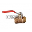 Mini Bronze Ball Valves