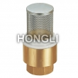 Household Bronze Check Valves
